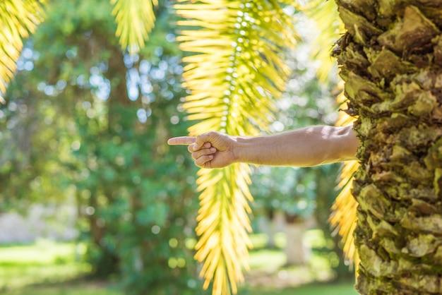 Męska Ręka Z Palcem Wskazującym Skierowanym W Prawo Zza Palmy Premium Zdjęcia