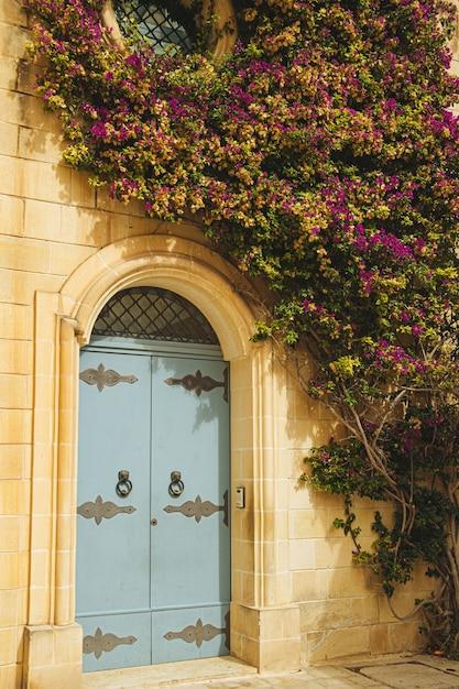 Metalowe Drzwi Starego Białego Budynku Ozdobione Rośliną Z Fioletowymi Kwiatami Darmowe Zdjęcia