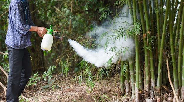 Mężczyzna trzyma zamglenie, aby wyeliminować komara, aby zapobiec rozprzestrzenianiu się gorączki denga i wirusa zika w bambusie Premium Zdjęcia