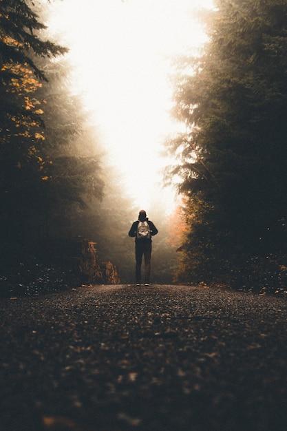 Mężczyzna Z Plecakiem Stojący Na ścieżce Między Wysokimi, Grubymi Drzewami Patrząc W światło Darmowe Zdjęcia