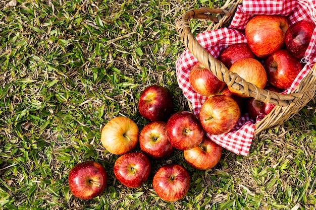Mieszkanie leżało pyszne czerwone jabłka w koszyku słomy Darmowe Zdjęcia