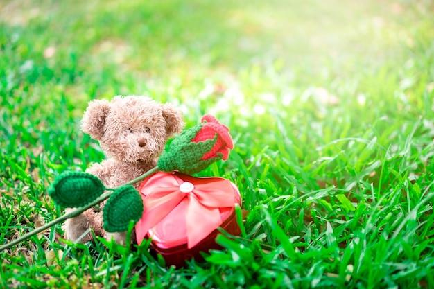 Miś Siedzi Z Czerwoną Różą I Prezentem Serca Na Trawie. Koncepcja Walentynki. Premium Zdjęcia