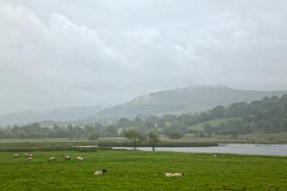 Misty Pastwisko Krajobraz Hdr Darmowe Zdjęcia