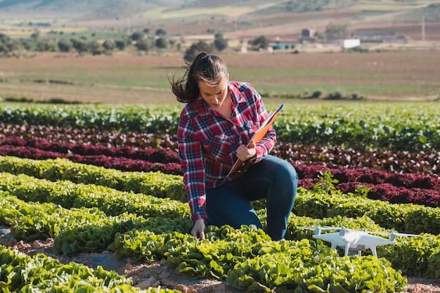 Młoda kobieta techniczna pracująca w polu sałaty z teczką i dronem Premium Zdjęcia