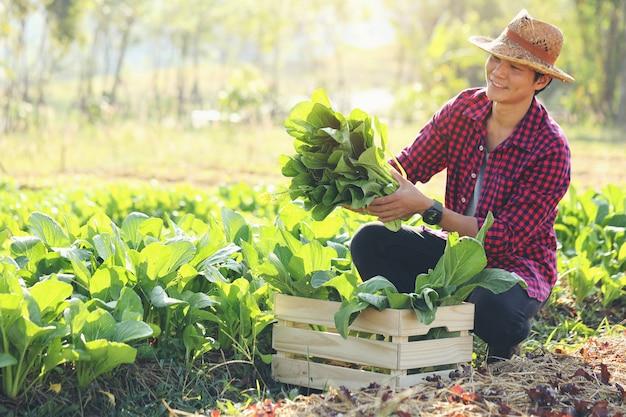 Młody Rolnik Z Ekologicznymi Warzywami W Drewnianych Skrzyniach Dostarczy świeże Warzywa Do Klientów. Premium Zdjęcia