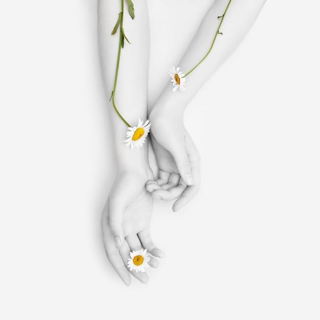 Moda Ręcznie Robiona Rumianek Naturalne Kosmetyki Kobiety, Białe Piękne Kwiaty Rumianku Ręka Z Jasnym Kontrastowym Makijażem, Pielęgnacja Dłoni. Kreatywnie Piękno Fotografii Kobiety Obsiadanie Przy Stołem Premium Zdjęcia