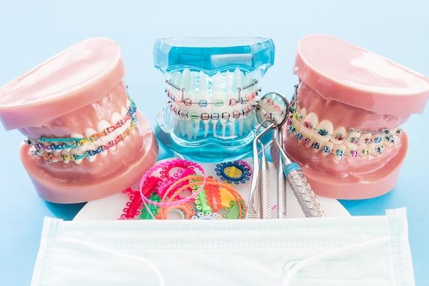 Model ortodontyczny i narzędzie dentystyczne - demonstracyjny model zębów z różnymi zamkami ortodontycznymi Premium Zdjęcia