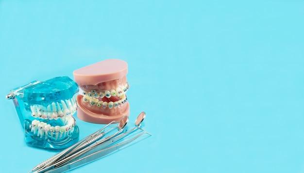 Model ortodontyczny i narzędzie dentystyczne Premium Zdjęcia