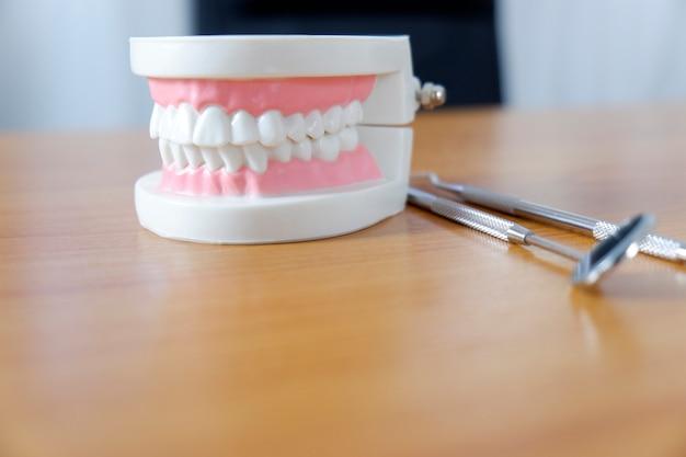 Model zębów na stoliku dentystycznym Premium Zdjęcia