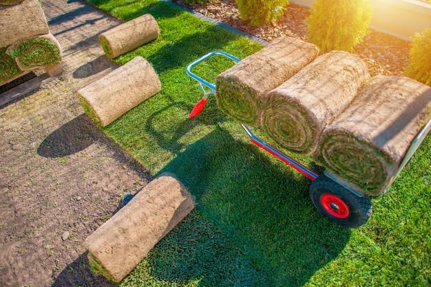 Montaż Trawy Trawnikowej Darmowe Zdjęcia