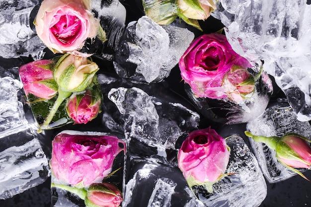 Mrożona Róża Darmowe Zdjęcia