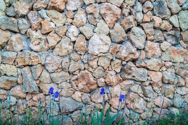 Mur Z Wapienia. Powierzchnia Jest Ozdobiona Naturalnym Materiałem. ściana Wykonana Jest Z Dzikiego Kamienia. Premium Zdjęcia