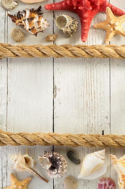 Muszla Na Drewniane Tła Premium Zdjęcia