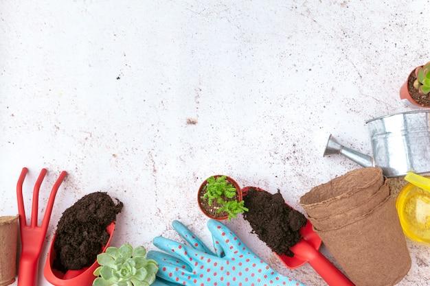 Narzędzia ogrodnicze i widok z góry, ogrodnictwo Premium Zdjęcia
