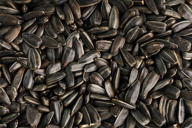Nasiona w czarnej skorupce to pęczek na białym tle Premium Zdjęcia