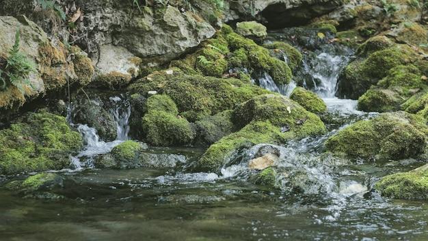 Naturalna woda źródlana z gór Premium Zdjęcia