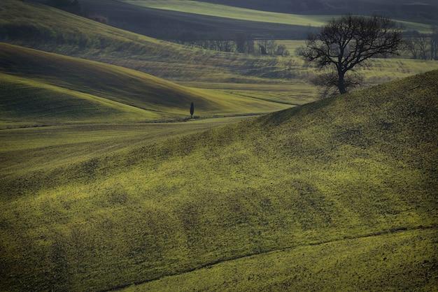 Naturalny Krajobraz Darmowe Zdjęcia