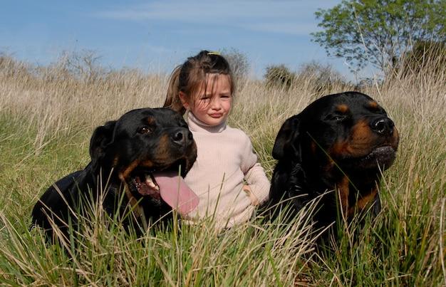 Niebezpieczne Psy I Dziecko Premium Zdjęcia