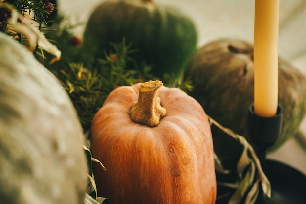 Nieociosany jesień wystroju przygotowania z baniami zamyka up Premium Zdjęcia