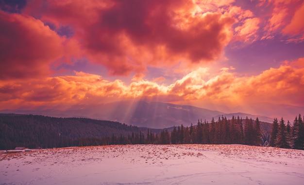 Niesamowity Wieczorny Zimowy Krajobraz Premium Zdjęcia