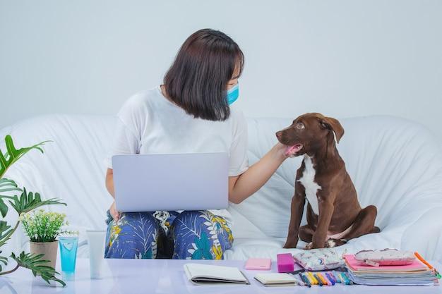 Niezależny, Praca Z Domu - Młoda Kobieta Pracuje W Pobliżu Psa Na Kanapie W Domu. Darmowe Zdjęcia