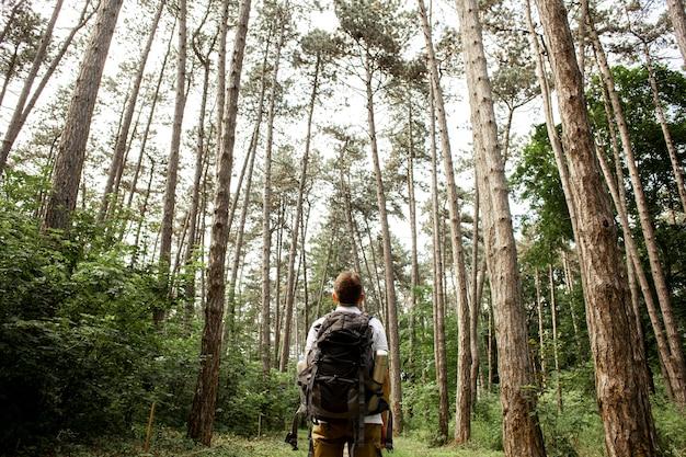 Niski Kąt Człowieka W Lesie Premium Zdjęcia