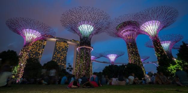 Noc Singapore Skyline W Gardens By The Bay Premium Zdjęcia