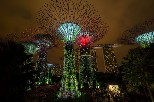 Noc Singapore Skyline W Gardens By The Bay Premium Zdjęcia