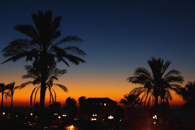 Nocny Widok Na Starym Mieście. Jaffa, Izrael. Premium Zdjęcia