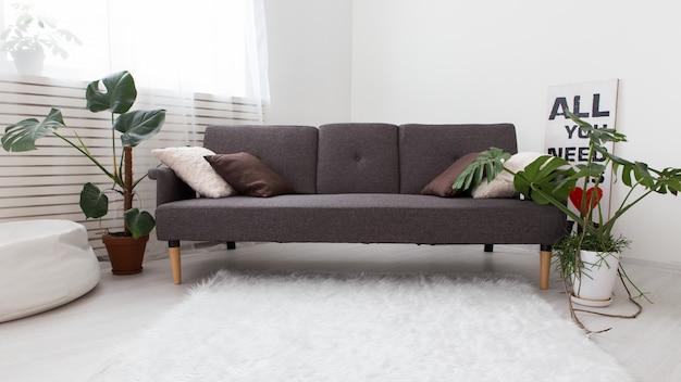 Nowoczesny Apartament Typu Studio Z żywymi Roślinami. Szary We Wnętrzu. Sofa W Salonie. Premium Zdjęcia
