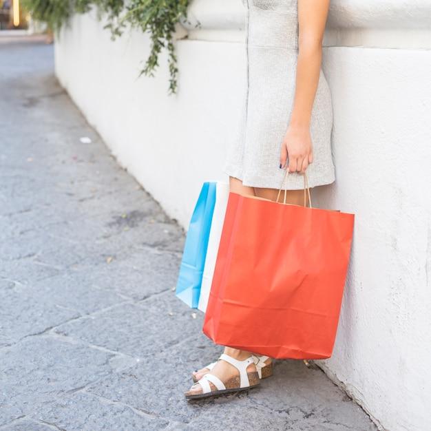 Nowożytna kobieta pozuje z torba na zakupy Darmowe Zdjęcia