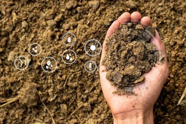 Obornik W Rękach Agronoma Do Uprawy Roślin I Drzew Premium Zdjęcia