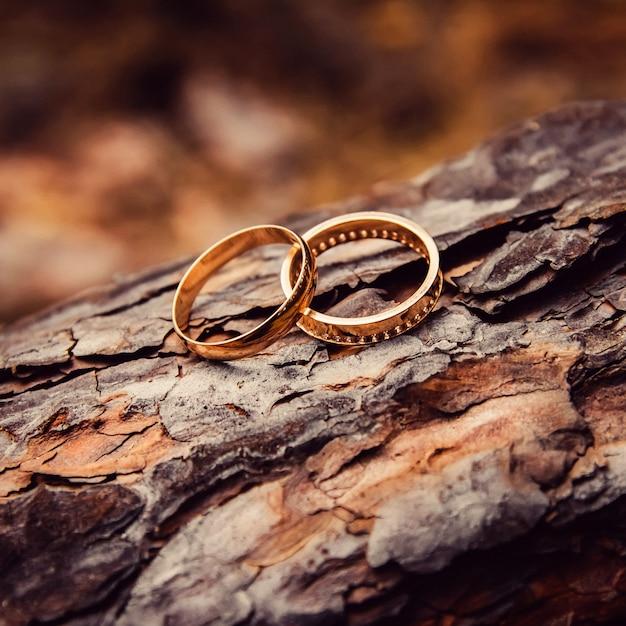 Obrączki ślubne. Biżuteria Z Białego I żółtego Złota. Obrączka ślubna Na Drewnianej Teksturze. Drewniany Kikut Premium Zdjęcia