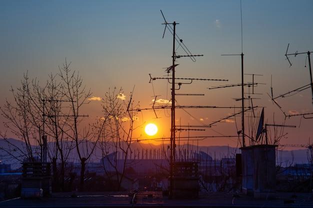 Obraz Sylwetki Drzewa I Anteny Telewizyjnej Na Dachu Podczas Zachodu Słońca W Zagrzebiu W Chorwacji Darmowe Zdjęcia
