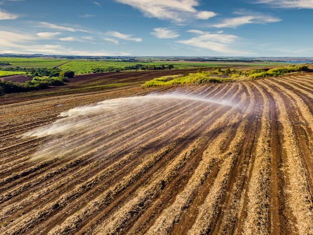 Obróbka Gleby Na Plantacji Trzciny Cukrowej Premium Zdjęcia