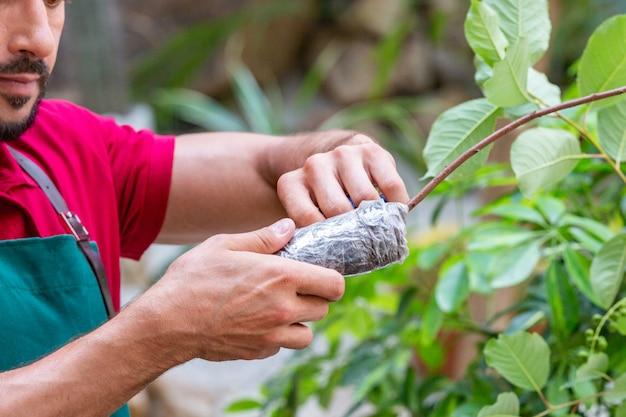 Obsługuje trzymać młodego drzewa i przygotowywać zasadzać w ziemię. Premium Zdjęcia