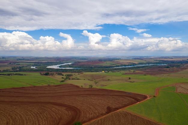 Obszar Wiejski Z Plantacjami I Rzeką Tiete Premium Zdjęcia