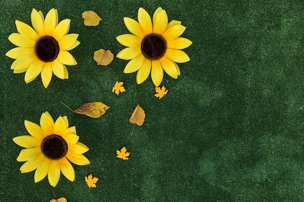 Odgórnego widoku rama z słonecznikami na zielonym tle Darmowe Zdjęcia
