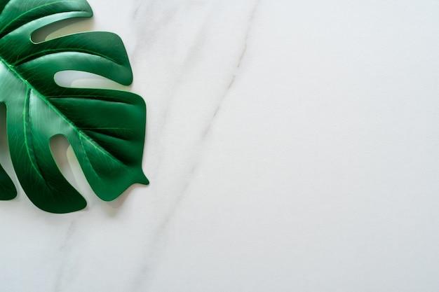 Odgórny Widok Białej Brzmienie Marmuru Tekstury Abstrakcjonistyczny Tło Z Zielonym Naturalnym Liściem Jako Ramowa Dekoracja. Premium Zdjęcia