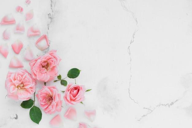 Odgórny Widok Wiosen Róże Z Płatkami I Marmurowym Tłem Darmowe Zdjęcia