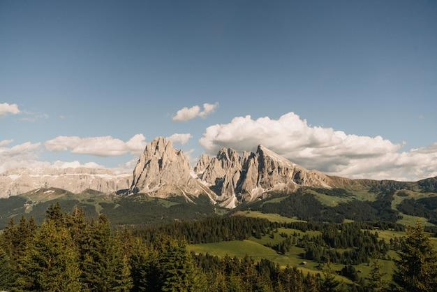 Odległe Ujęcie Wysokich Gór Otoczonych Drzewami Pod Jasnym Błękitnym Niebem Z Białymi Chmurami Darmowe Zdjęcia