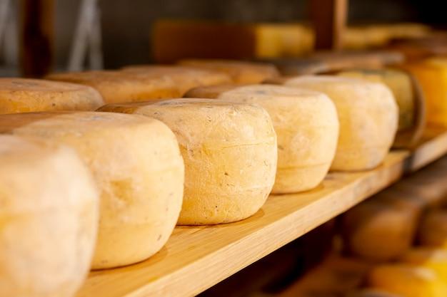 Odmiana sera pleśniowego z bliska Darmowe Zdjęcia