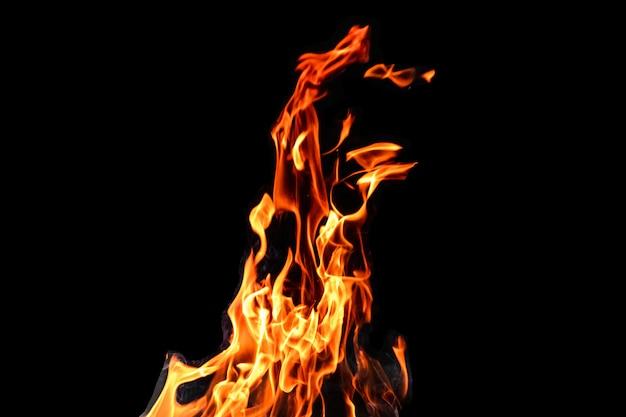 Ogień, Płomienie Na Czarnym Tle Izolować. Koncepcja Ognisko Grill Weekendowy Grill. Premium Zdjęcia