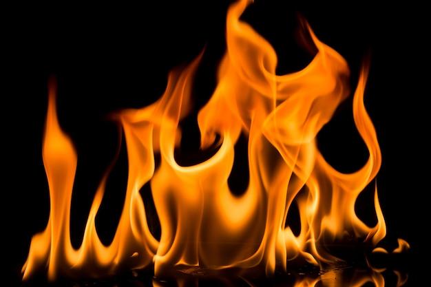 Ogień płonie na czarnym tle. Premium Zdjęcia