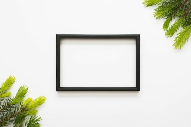 Ogólny Widok Czarnej Ramki I Zielony Jodła Na Białym Tle Darmowe Zdjęcia