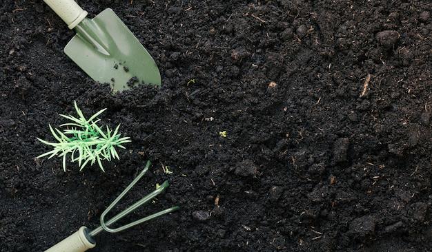 Ogrodnictwo łopata I Ogrodnictwo Grabie Na Czarnym Brudzie Z Rośliną Darmowe Zdjęcia