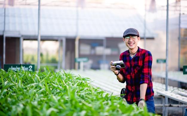 Ogrodnicy Mężczyźni Sałatka Patrząc Na Sałatkę W Swoim Ogrodzie Koncepcja Tworzenia Zdrowych Działek Warzyw Premium Zdjęcia