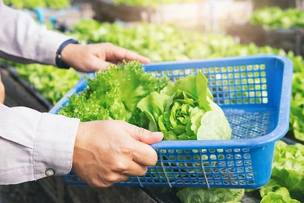 Ogrodnik Zbiera Warzywa Z Ogrodu Domowego. Premium Zdjęcia