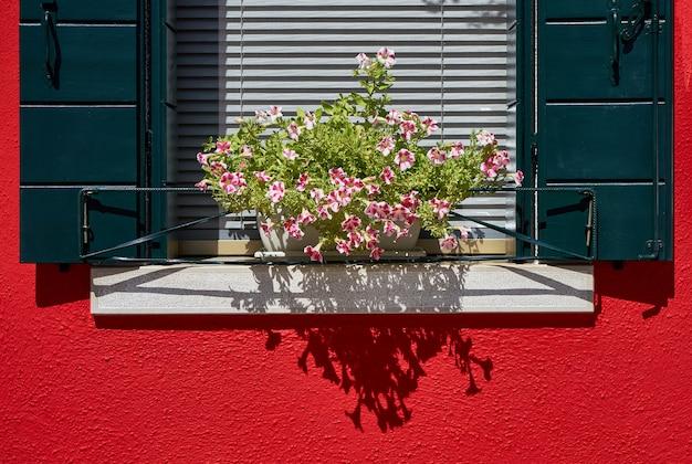 Okno z zieloną migawką i kwiatami w doniczce. ja Premium Zdjęcia