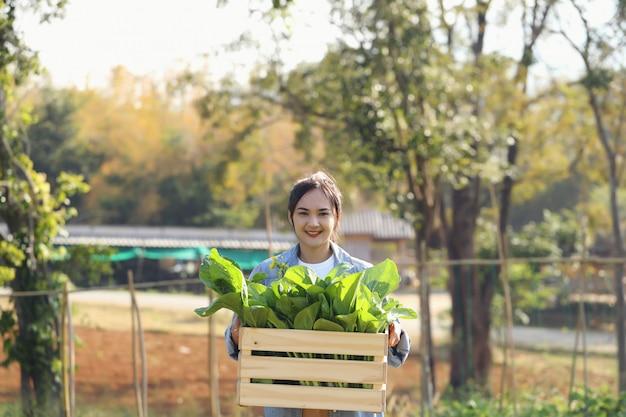 Organiczne Ogrodniczki Młode Kobiety Zbierają Warzywa W Drewnianych Skrzyniach, Aby Rano Dostarczyć Je Klientom. Premium Zdjęcia